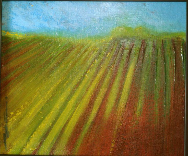 Spring Field12x14$150
