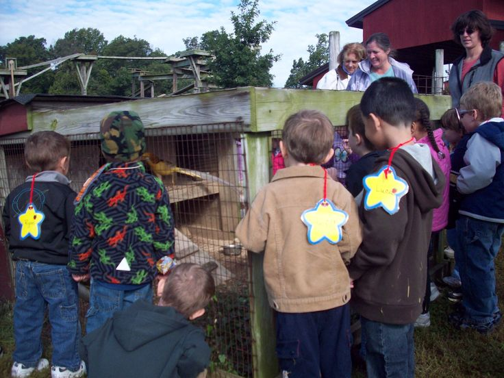 Tours include a visit to our BarnYard Buddies