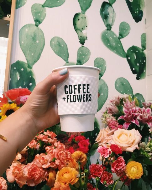 Where to Find the Best Coffee Shops in San Diego