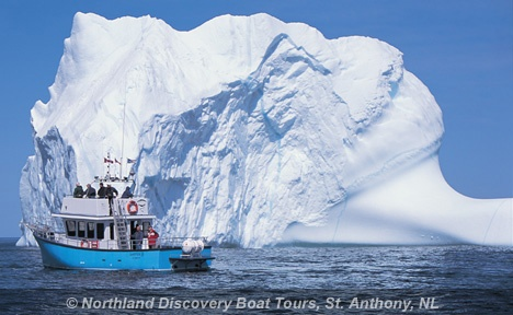 Iceberg Tours St. Anthony Newfoundland,We had the best time ever in St Anthony.
