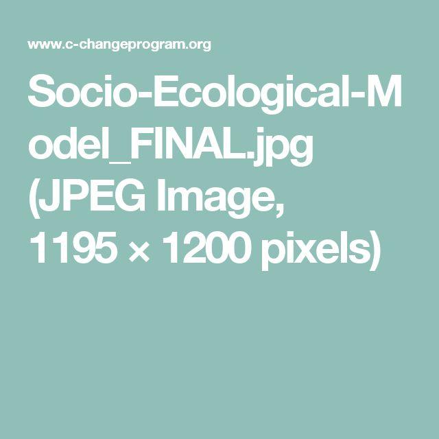 Socio-Ecological-Model_FINAL.jpg (JPEG Image, 1195×1200 pixels)