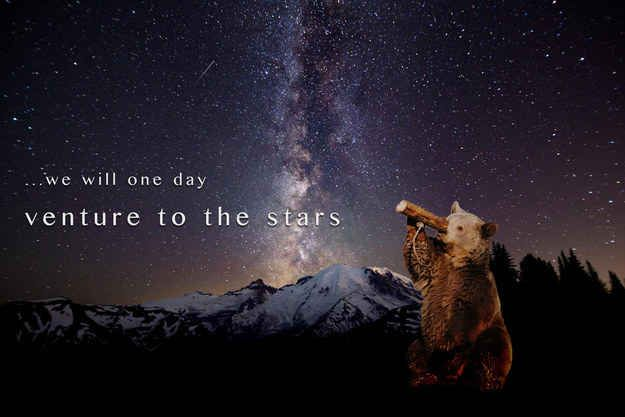 Bearspiration | This Cute Bear Picture Was Photoshopped Into Total Awesomeness