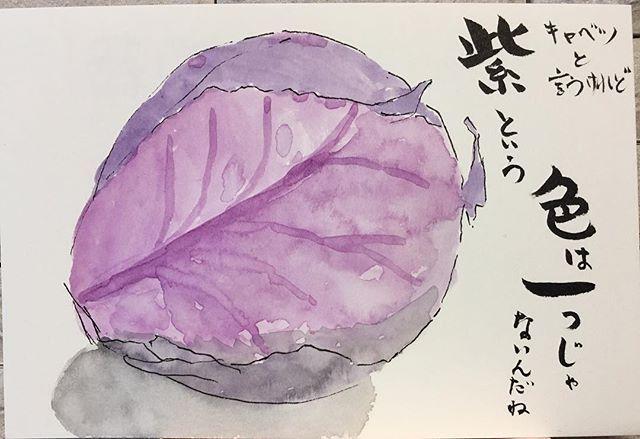 紫キャベツと言うけれど、 紫という色は一つじゃないんだね。 #絵手紙 #絵てがみ #えてがみ #etegami #picture_letter #postcard