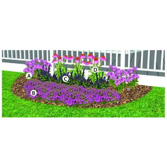Perennial Butterfly Garden for Sun ♡ Butterfly Garden # ...