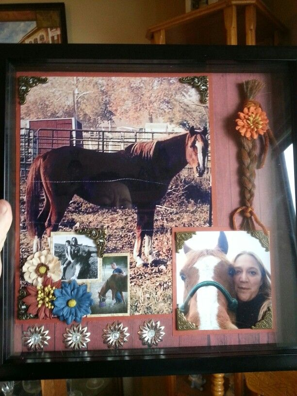 Shadow box I made for my friend whose horse passed away.