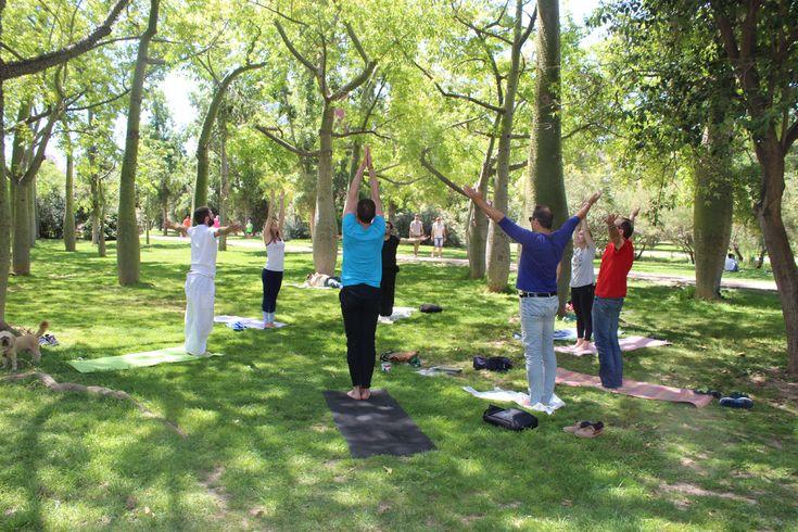 Fotografías de la clase de yoga solidaria con Arcadys, realizada el 14 de mayo de 2017, en el antiguo cauce del rio Turia, impartida por la socia y colaboradora Bárbara De Joz Fritsch.    Ver la galería de fotos directamente en Flickr  https://www.flickr.   #Aire libre #Solidaridad #Yoga