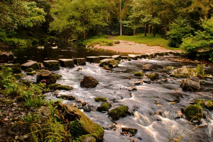 Taken at Hardcastle Crags these stones cross the river Nr the Hebden Hey scout hostels. View my blog at, www.colingreenphotography.blogspot.co.uk. Picture Copyright © 2017 Colin Green All Rights Reserved
