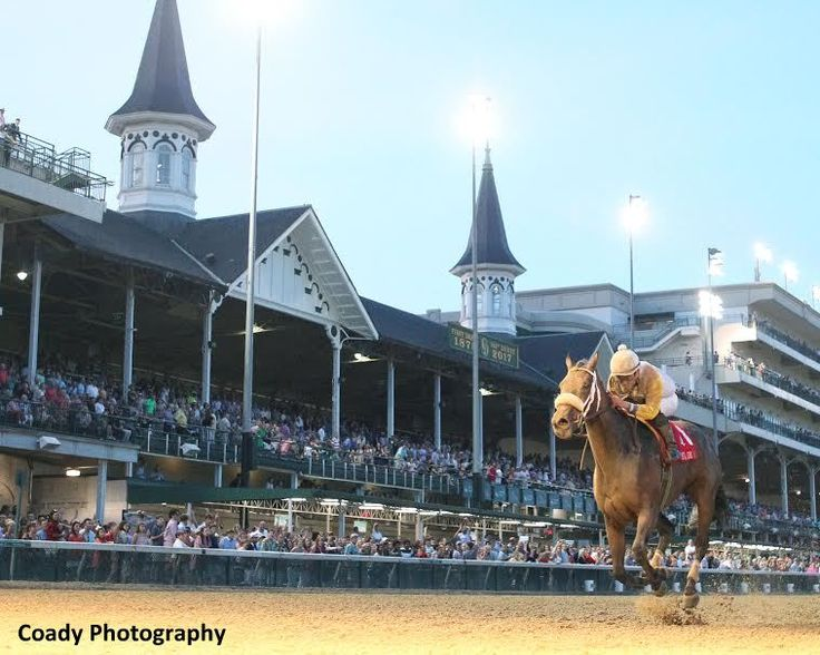 7277 best Horse Racing images on Pinterest | Horse racing, Horses ...