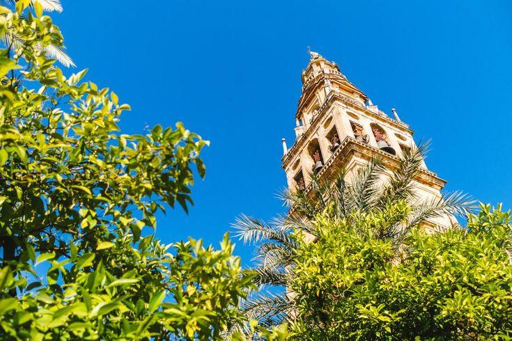 Avec sa feria, sa mosquée-cathédrale, ses patios, son alcazar et ses quartiers juifs, Cordoba est une étape incontournable lors d'un voyage en Andalousie.