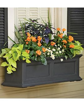 Fairield Window Box from Gardeners Supply