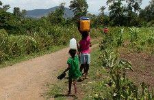 Radio Metropole Haiti ! | Vers l'élimination du travail des enfants en Haïti - Nouvelles d'Haiti, Haiti actualités, Haiti News, politique, économie, sports, culture