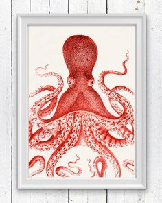 Big Red octopus, Nautical Print Beach Decor bathroom Decor Nautical Decor Wall Art Beach House Decor Octopus Picture SPOJ043 by seasideprints on Etsy https://www.etsy.com/listing/185779018/big-red-octopus-nautical-print-beach