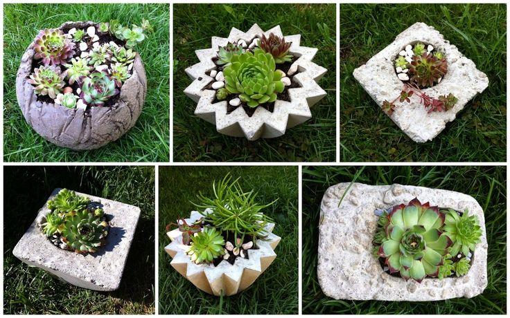 Hübsches aus Beton und Hauswurz Beton giessen Pinterest - Gartendeko Aus Beton Selbstgemacht