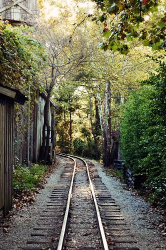 Remember that happiness is a way of travel - not a destination. ~ Roy M. Goodman: Beautiful Training Track, Time Travel, Old Training Track, Training Travel, Training Riding, Trainsscen View, Happy Is, Training Food, Railroad Track