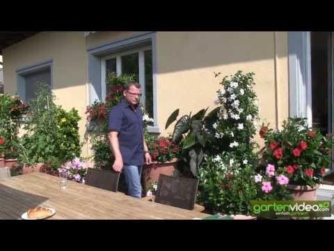 7 best garten video images on pinterest balcony garten and plants. Black Bedroom Furniture Sets. Home Design Ideas