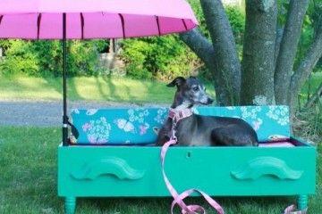 manualidades creativas para perros - cama para perros con sombrilla