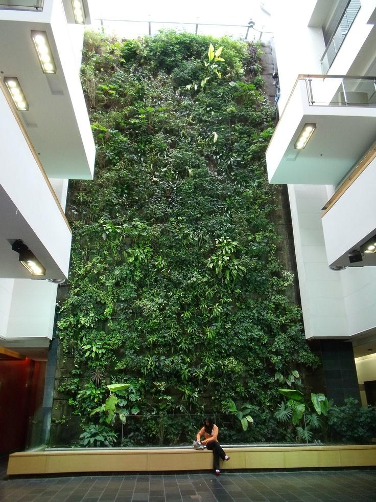 #Living Wall ein #vertikaler Garten in der #Stadt, ein Traum von Grün.