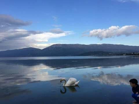 Liqeni i Pogradecit. | Natural landmarks, Landmarks, Nature