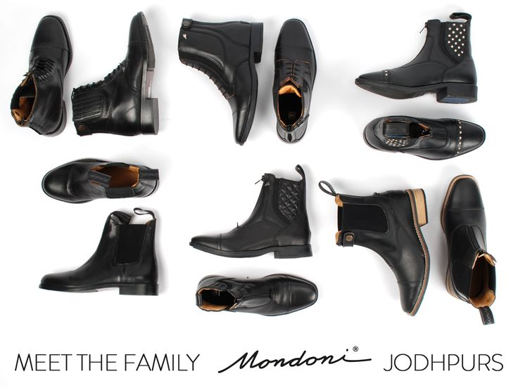 Meet the family! Jodhpurs van Mondoni. #mode #musthave #jodhpurs #ruiter #ruitersport #hot #horses #horse #schoenen #paarden