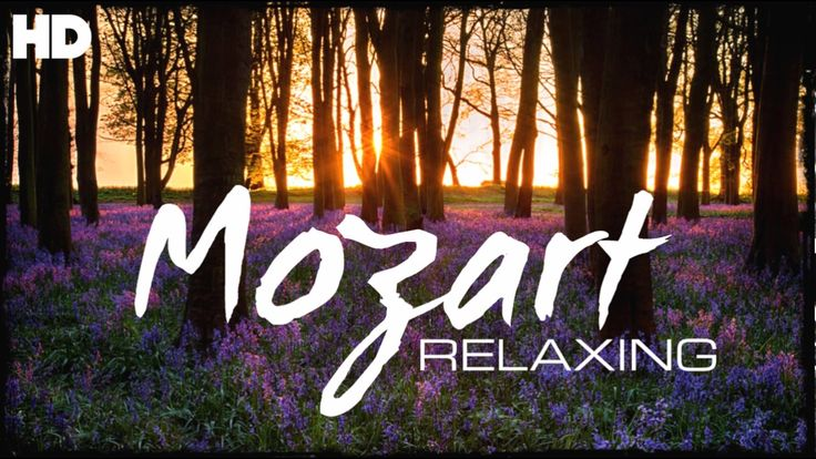 The Best Relaxing Classical Music Ever By Mozart - Relaxation Meditation...