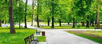 park buiten de school voor ontspanning