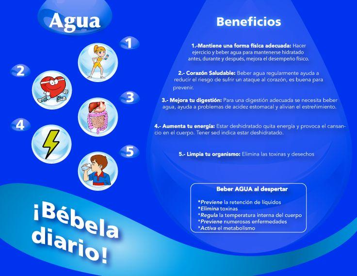 Díptico Reverso #Agua #Nutricion  Elimina Toxinas