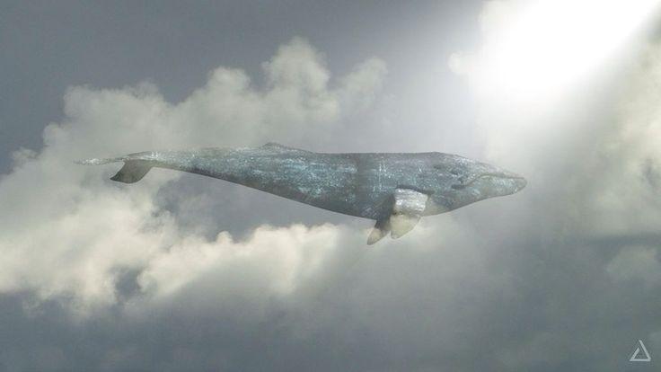 Air whale