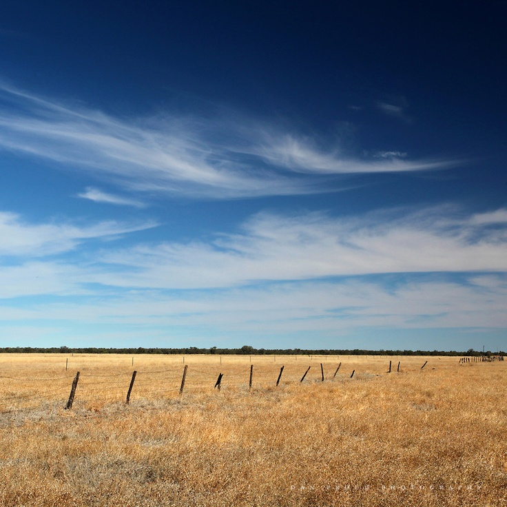Quintessential example of outback fencing
