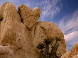 Heart Shaped Rock, Joshua Tree
