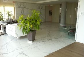 Tenant (Commercial) Reception - Honed Marble Floor   Scope of work: clean grout, sand, hone and protect floor with a penetrating sealer.