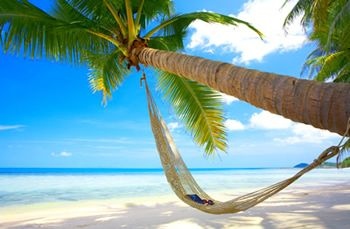 Punta Cana: Punta Cana, Beaches, Vacation, Favorite Places, Dream, Hammocks, Palm Trees, Travel, Space