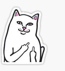 Fk You Cat Pegatina