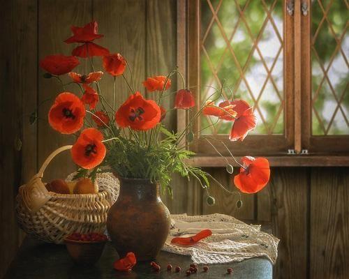 Ах, лето красное.... Фотограф Ирина Приходько
