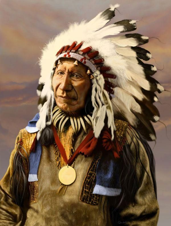 american indians and alaska natives essay Native american cultures across the us  in her essay, teaching young children  countering prejudice against american indians and alaska natives through.