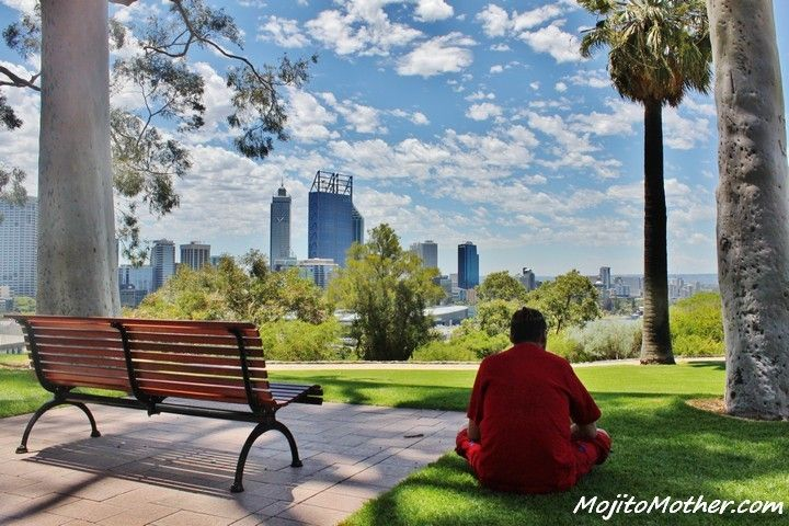 View Of Perth Skyline From Kings Park, Western Australia