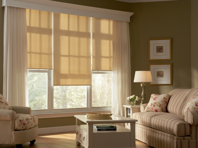 Hunter Douglas Designer Roller Shades with Standard Clutch-Shades... Like the crown moulding box