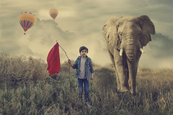 Photographers in Aurangabad for Conceptual Photography