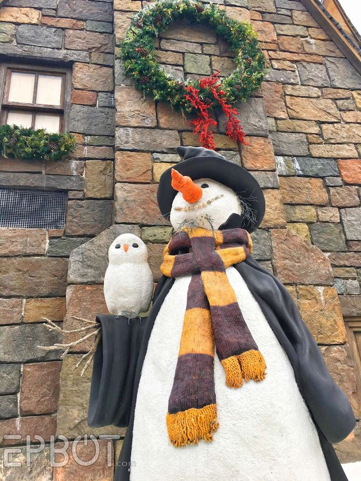 """There's a small fan-run event  here in Orlando (and also LA) called """" Dressed To The 9 3/4s ,"""" held in the Wizarding World sections of Univ..."""