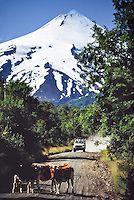 Villarrica volcano & National Park, Los Lagos Region, Chile, Patagonia, South America. | portfolio.photoseek.com