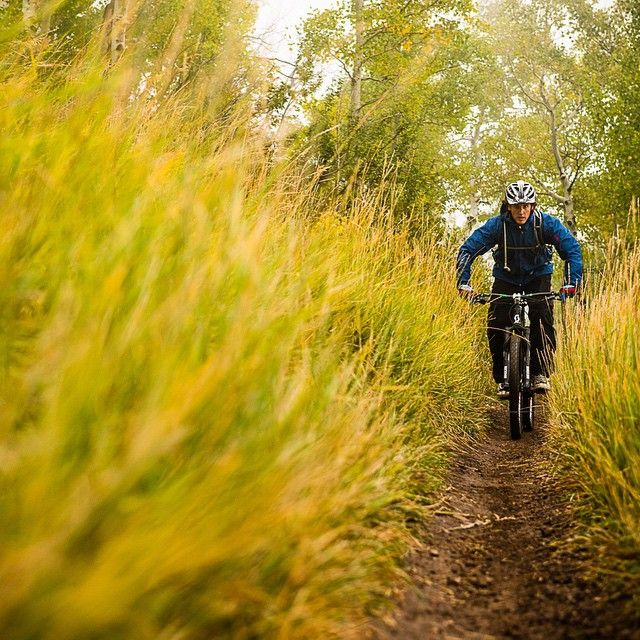 Mountain biking MTB Bike Photo of the Day, May 31 2015: Selected by @matt_wragg - The more I look at this shot, the more I like it. It's the texture of the lush, long grass that does it for me here. Photo: @fotomaxizoomdweebie | Rider: @scotty_house #mtb #photooftheday #pinkbike #utah (fb)
