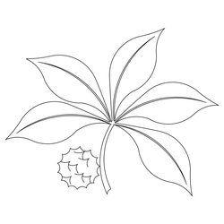 Shop | Category: Flowers / leaves | Product: Buckeye leaf motiff