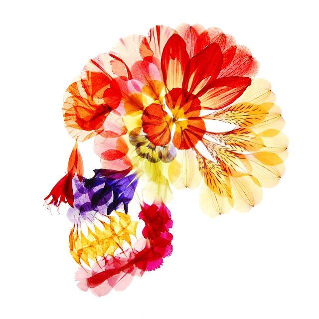 flora  女は花のように美しく、花のように笑い、花のように個性豊かだ。 花のように気まぐれで、花のようにか弱く、時に力強い。 花のように枯れて、花のように子孫を残すのだ。  女とは一体なんであろうという思考の中で さまざまな個性をもった女たちの洋服を、化粧を、 終いには皮膚や肉までもはぎ取ってしまった時、 そこに残るのは女の本質の意を持った「骨」だった。  その骨を、女の形容として用いられ、 描かれてきた花というモチーフで再構成し、 生まれたのが彼女floraである。  女というものを語ることは容易いことではないが、 女という巨大な概念の理解への入り口へ彼女は導いてくれるだろう。  無言のうちに語りか
