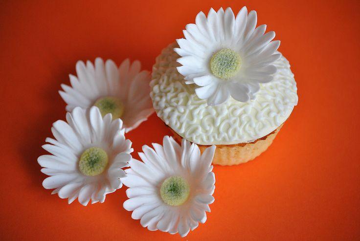 Cupcake margarita.
