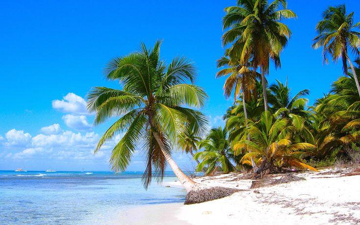 カリブ海岸の風景、砂浜、ヤシの木、海 壁紙 - 1920x1200