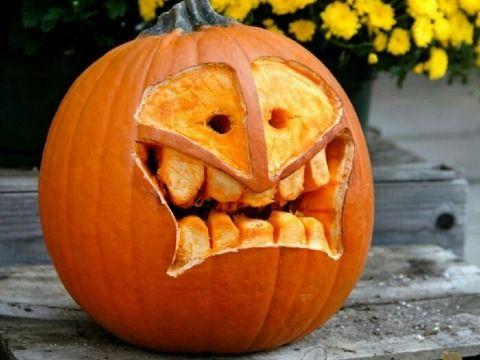 Diseños De Calabazas Para Halloween Originales Y Divertidos Calabazas De Halloween Diseños De Calabaza Calabazas Talladas