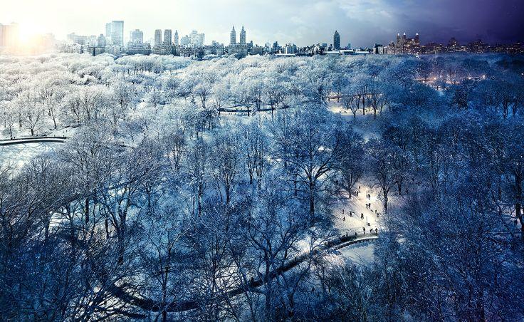 Central Park Snow, NYC -