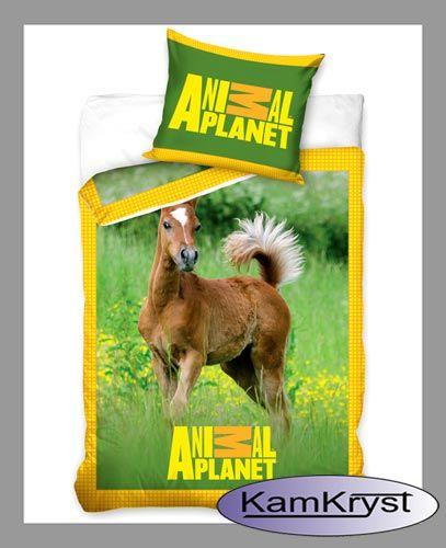 Cudowny źreabak na tle zielonej łąki - pościel dla dzieci, młodzieży i nie tylko - pościel dla miłośników koni. Pościel z kolekcji Animal Planet