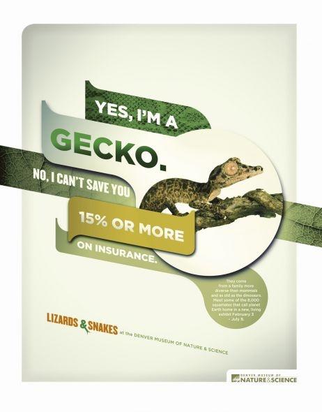 Denver Museum of Nature & Science: Gecko