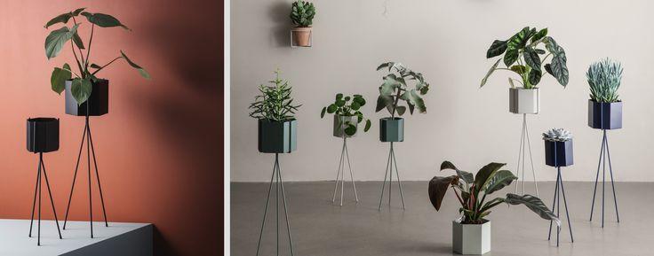 Plantenhouders & vazen