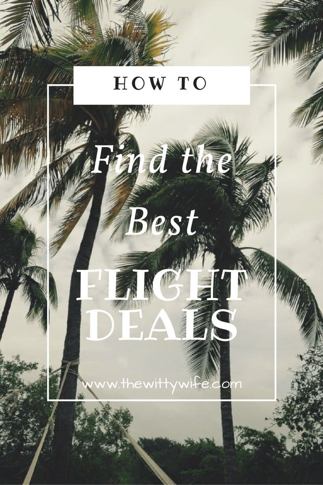 Don't miss your chance to find the cheapest flights out there!--The Witty Wife